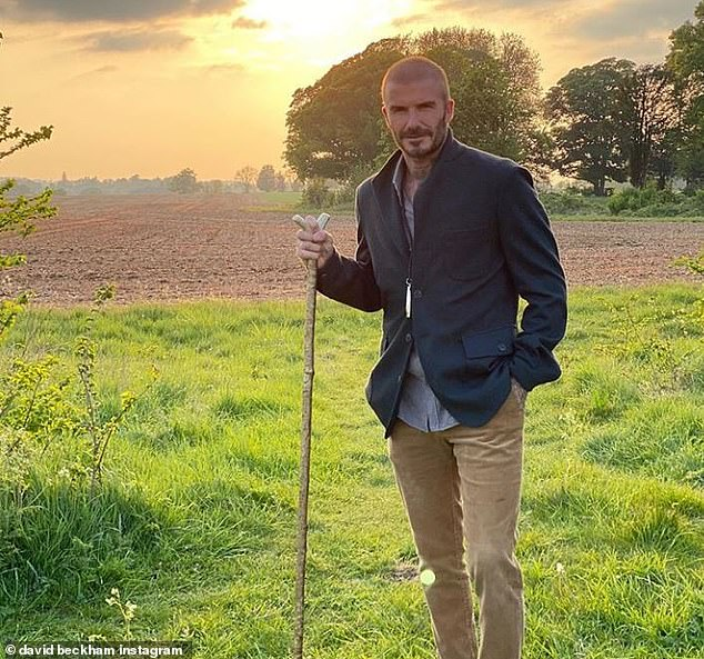 It is the Beckhams' latest planning success after they were given the green light to build a wine cellar and a guard house