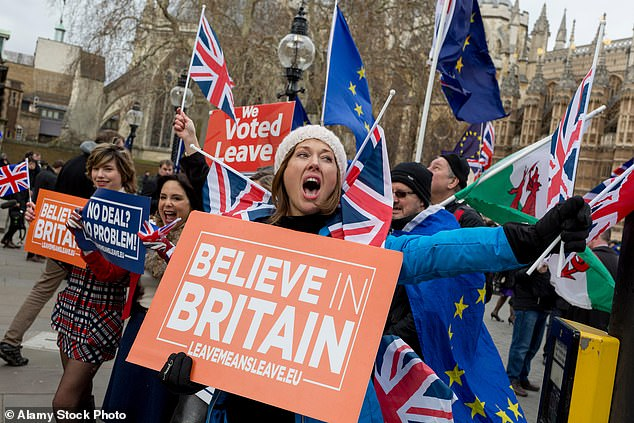 Leave protesters are pictured outside UK Parliament on January 15, 2019