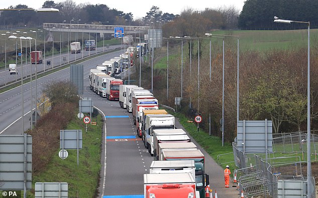 Freight lorries , while half of the available lanes were blocked off.It is understood that further intermittent border tests will be carried out before the Brexit transition period comes to an end on December 31