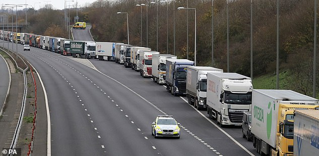 The delays were caused by French authorities testing the impact of EU and Schengen immigration controls at the Eurotunnel terminal in Folkstone in the event of no deal