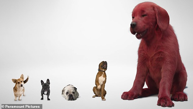 Big things coming: A first look teaser for the Clifford the Big Red Dog movie was released on Wednesday