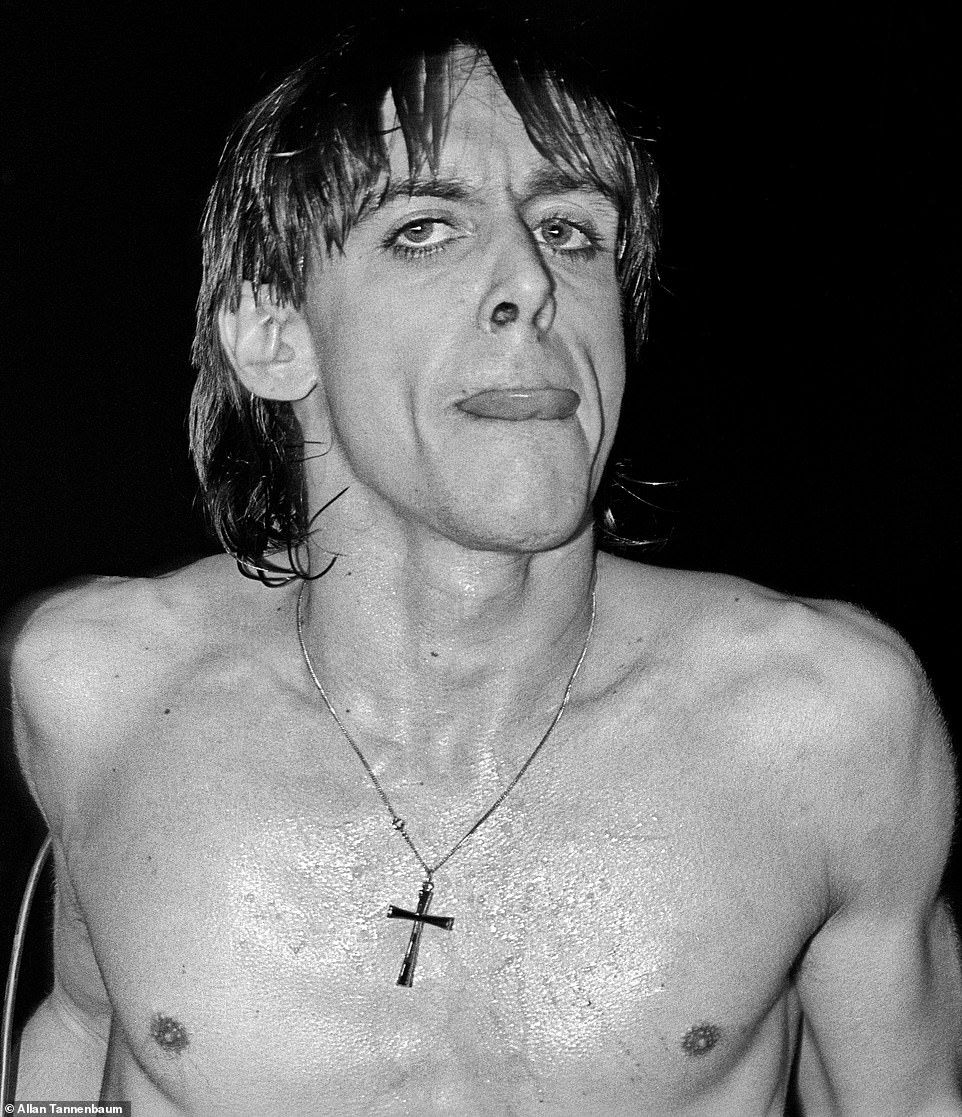 In 1967, Iggy Pop helped to form the Stooges. While performing with the band, shirtless Pop became known for antics that included stage diving.After they broke up in 1974, he had a solo career that included the hit, Lust for Life. Above, Iggy Pop performing at The Palladium, NYC, 1977. 'That was a tough show to do,' Tannenbaum recalled. 'The crowd was so wild.' He said that David Bowie came out and played the piano during the show. In the 1970s, Bowie and Pop collaborated on music