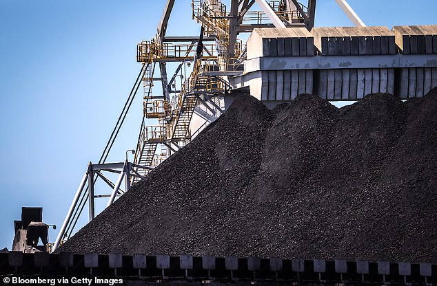 The bulk freighters have been there for over a month with more than 1000 sailors on board stranded (pictured, a pile of coal at the port of Newcastle)