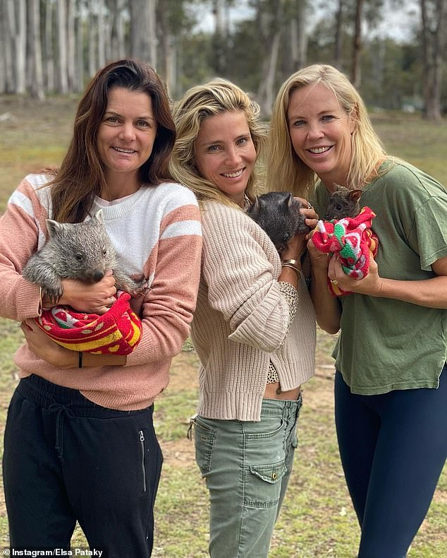 Cute! Elsa Pataky cuddled up to wombats with her gal pals during trip to the countryside in Tasmania and shared photos from the trip to Instagram on Thursday