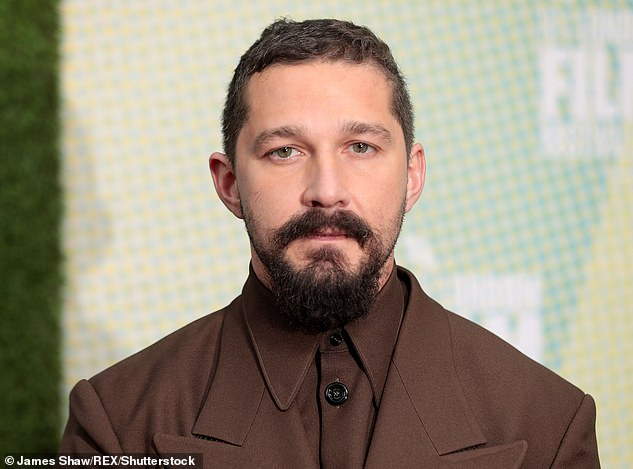 Charges: It was explained in October that the Los Angeles City Attorney's Office had decided to press charges against Shia for allegedly using force and violence against Tyler Murphy