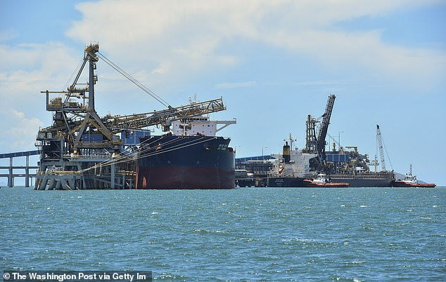 An Australian coal flotilla trapped off the coast of China has swelled to 82 ships and is carrying $1.1billion in blacklisted cargo. Pictured coal freighters in Hay Point, Queensland