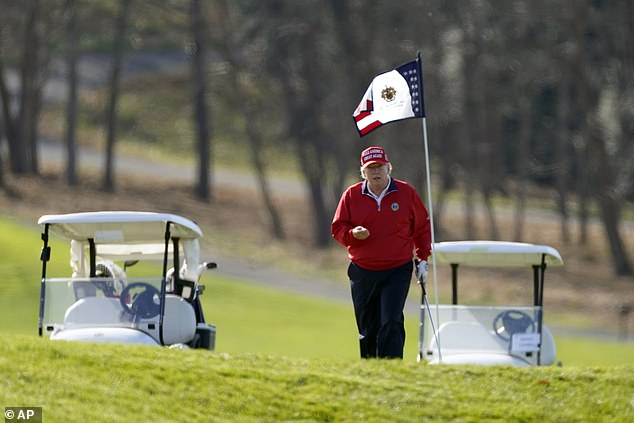 President Trump spent his Thanksgiving holiday playing golf and then tweeting about the election. He is seen above at his golf course in Sterling, Virginia, on Thursday