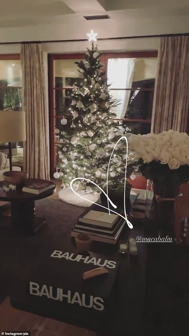 Sparkly: In a second post, Pia shared how the living room looked at night, sparkling with the Christmas lights (pictured)