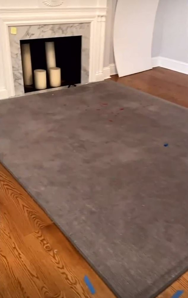 A rug in front of a fireplace appeared to have multiple stains on it