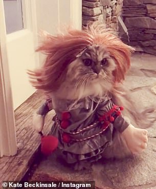 Beckinsale loves to dress Clive up in costumes - pictured at Halloween