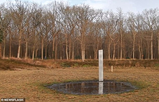 Hikers were intrigued after spotting a metallic column in a nature reserve in a village in Oudehorne, Friesland, The Netherlands