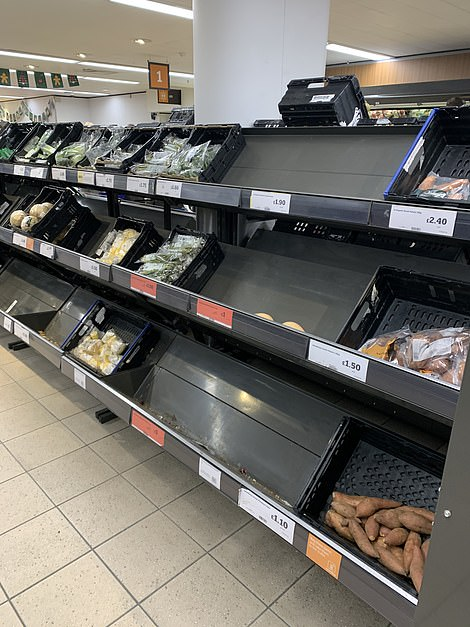 The shelves at this Sainsbury's store were looking stark yesterday morning as long lines of shoppers began queuing at supermarkets across the UK early yesterdaymorning