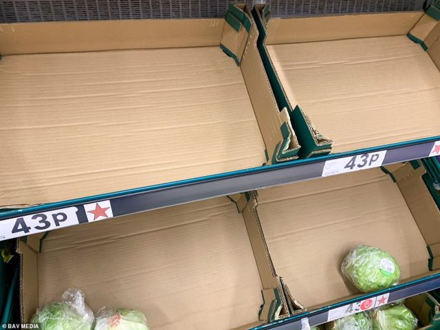 Supermarkets warned that lettuce was among the products that would be at risk of shortage if the border with France remained closed, as lettuce and salad is typically imported from the Continent at this time of year