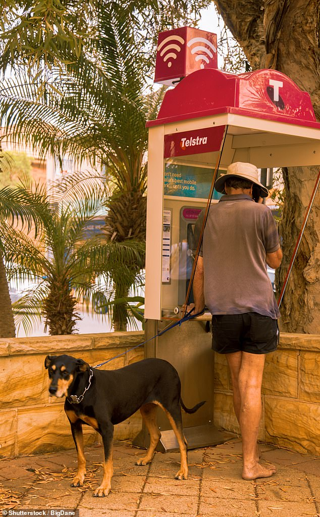 A man walking his dog speaks at a Telstra Payphone in Avalon in the Northern Beaches, where there is a cluster of 97 coronavirus cases