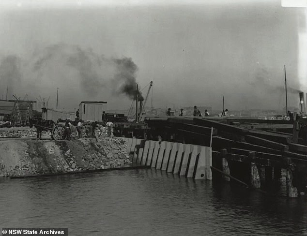 A 'rat proof' wharf was even set up to try and prevent any rodents entering into the city