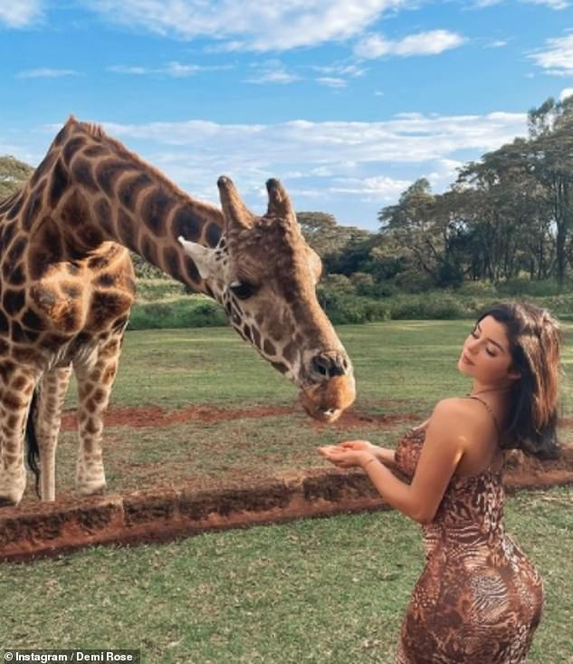 Holiday: Demi's cozy Christmas day in Ibiza comes after she was the envy of her fans as she enjoyed a sun-soaked tour of Africa and even got the chance to hand-feed giraffes in Kenya