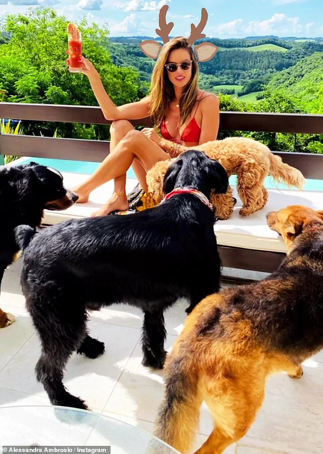 Squad goals: She sipped her morning cocktail by the pool with her dogs