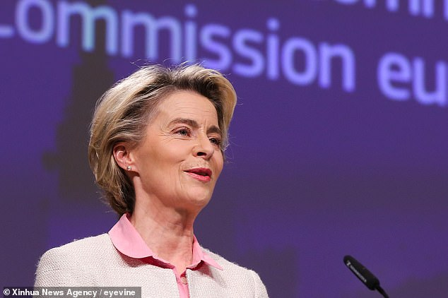 'You look fresh,' the Prime Minister told Ursula von der Leyen (pictured), the president of the European Commission, 'for someone who has been counting fish all night'