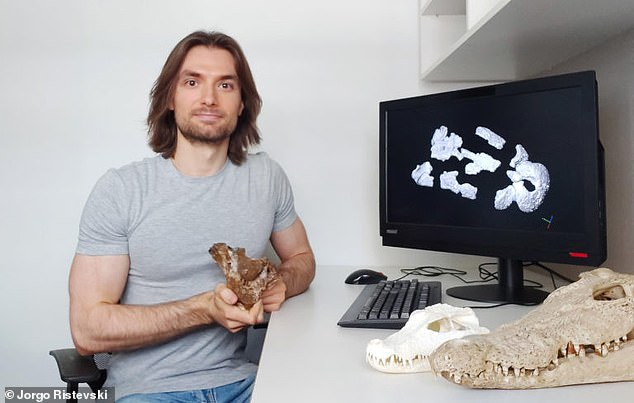 University of Queensland researcher Jorgo Ristevski with the Swamp King skull. The ancient predator ate giant wombats and kangaroos in southeast Queensland millions of years ago