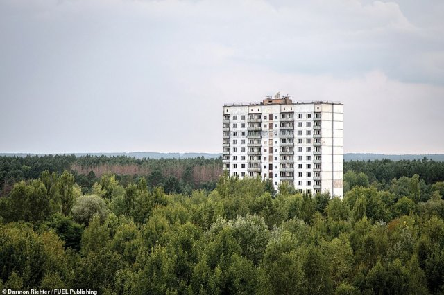 A residential building in the outskirts of Pripyat. The city is completely enveloped in a dense blanket of forest, blurring its former perimeters