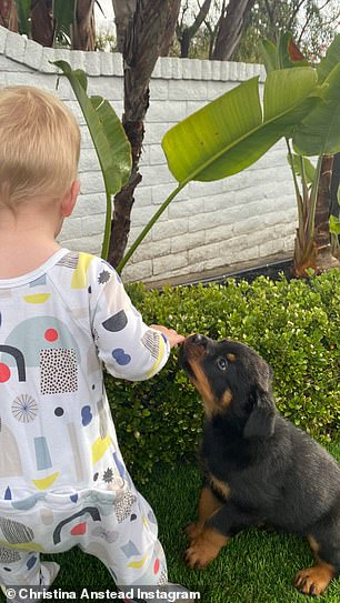 Boy's best friend: Another heartwarming snap shows her youngest, son Hudson, one, walking like a pro in their yard, as Biggie sniffed at his hand