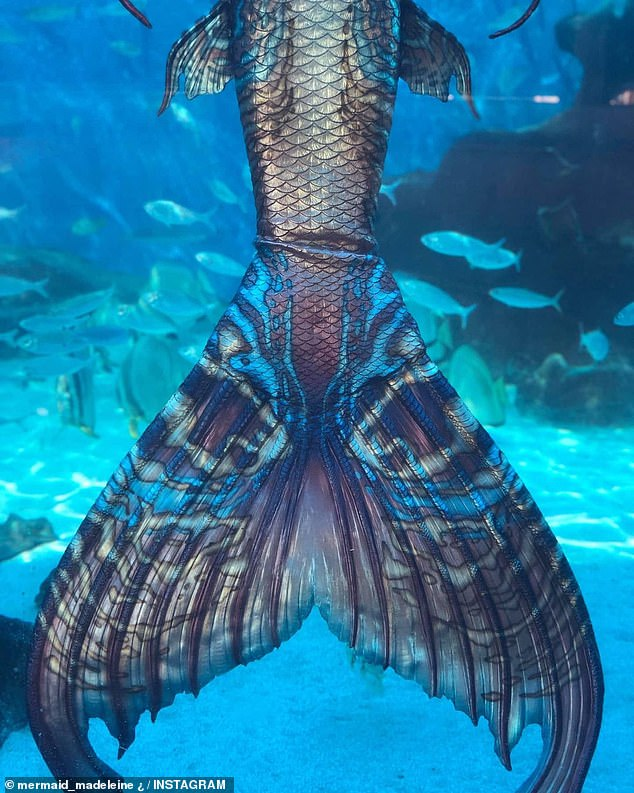 Ms Petty is a super-fit and healthy mermaid as she swims with 17kg attached to her throughout the performance; the tail alone weighs 13kg