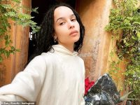 Zoe Kravitz posts cryptic meme about taking out the trash after filing for divorce from Karl Glusman