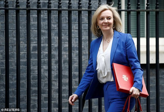 Last month equalities minister Liz Truss (pictured) warned a 'fashionable' focus on race, gender and sexuality had narrowed the debate on equality [File photo]