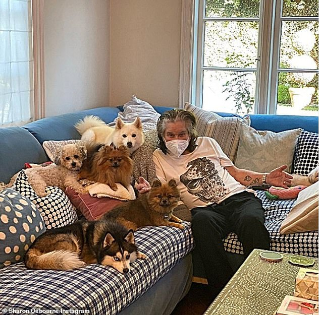 So excited: 'And look at the joy waiting for me!' wrote Sharon, who included a photo of her husband wearing a mask on the sofa alongside five puppies