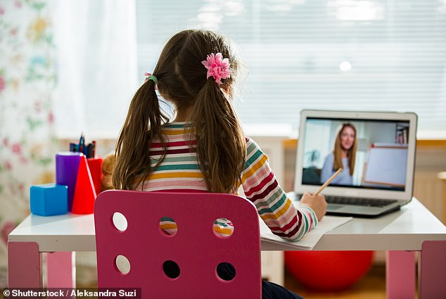 Data from the Office for National Statistics says only 51 per cent of households earning between £6,000 and £10,000 have internet access