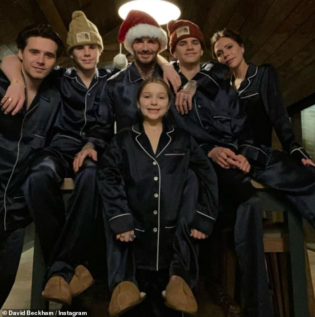 Family trip: The famous parents are said to have embarked on the journey on Christmas Day and joined by their other offspring Romeo, 18, Cruz, 15, Harper, nine