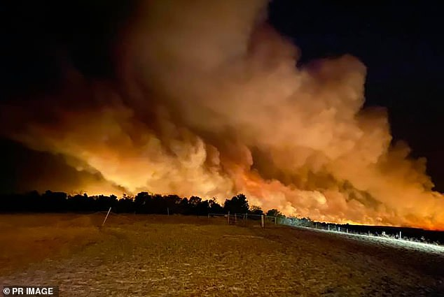 BoM said it was difficult to determine when the bushfires in Perth would end as they need a huge dump of rain. Pictured: The Red Gully bushfire near Gingin north of Perth, January 5