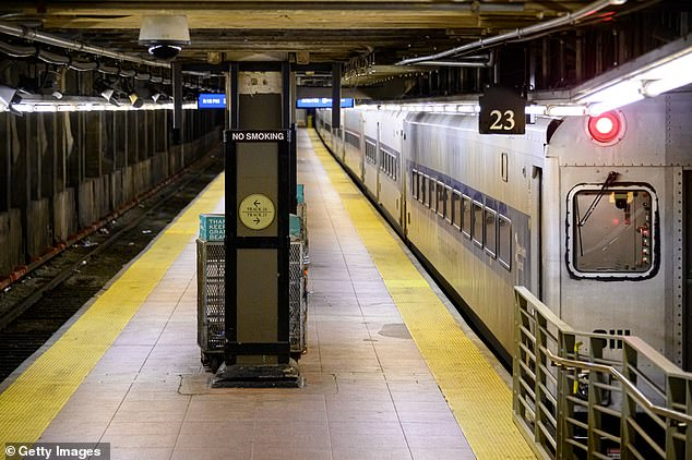 Pepe, 31, from Beacon, New York, had been with the MTA for seven years earning $73,000-a-year