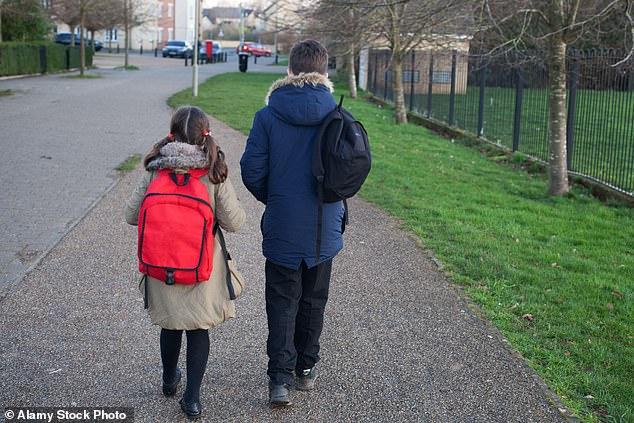 Department for Educationguidance says schools should not limit the number of children of key workers or vulnerable pupils on-site during lockdown (stock image)