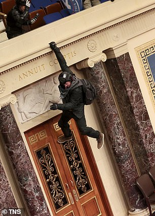 Another protester is seen hanging from the balcony in the Senate chamber on Wednesday