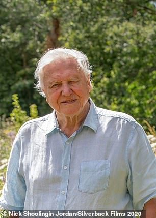 A Perfect Planetmay be the most technically stunning David Attenborough show yet