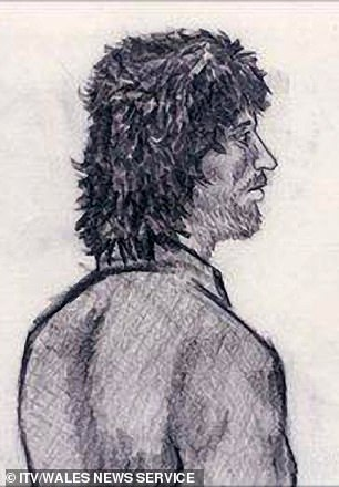 A breakthrough came for DS Wilkins in 2009 when unearthed footage of Cooper on Bullseye showed him looking remarkably similar to a police sketch (pictured) of the killer from a witness' description following the Dixons' deaths