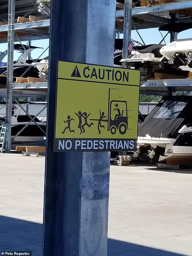 One site manager displayed a graphic sign of how pedestrians could be injured if they ignore the caution sign