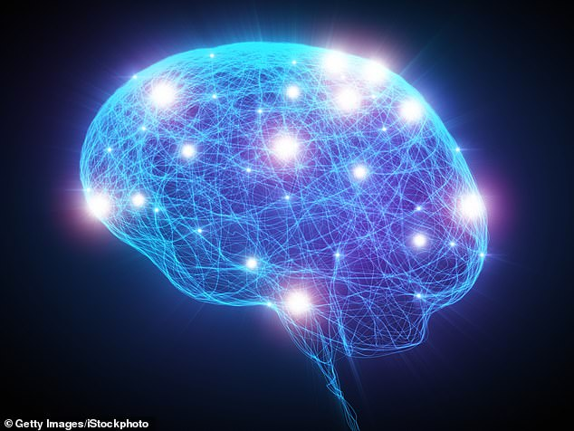 The brain cells lie in a region known as the entorhinal cortex, which controls memory, navigation and time perception, and are the first to be killed off (stock image)
