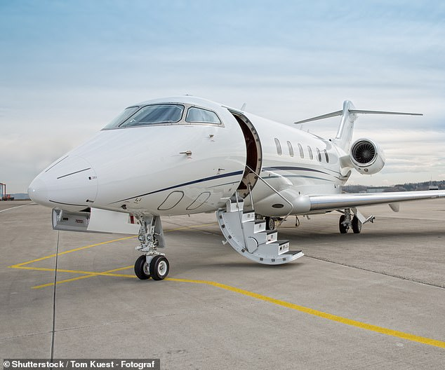 Bidding war: Signature, provider of support services to private jet operators such as NetJets, controlled by Warren Buffett, is part of a dwindling band of UK firms in aerospace