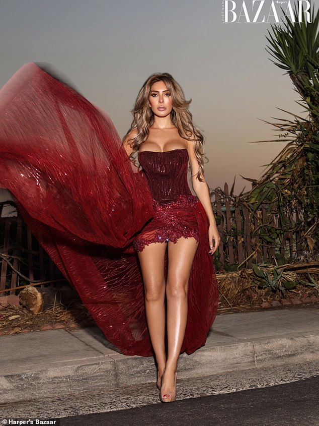 Incredible: One snap showed Farrah posing in a gorgeous wine-coloured gown with a dramatic tulle skirt that perfect accentuated her endless pins