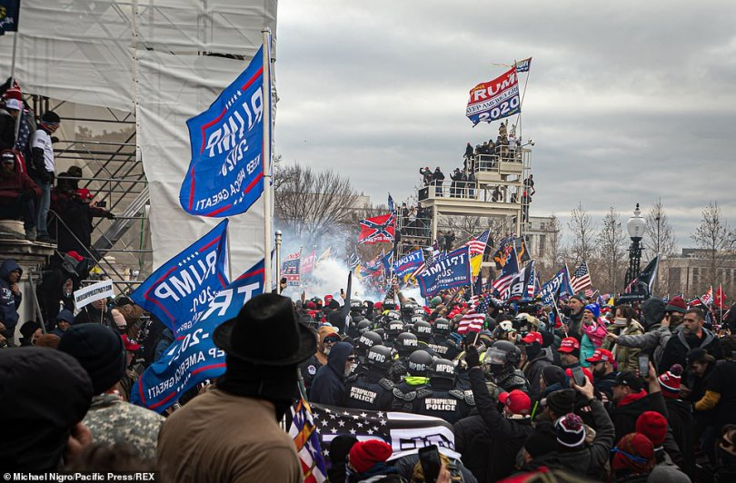 Without much backup on Wednesday, January 6, Capitol Police were easily overtaken by a mob of thousands of pro-Trump supporters who they were unable to prevent from storming the building