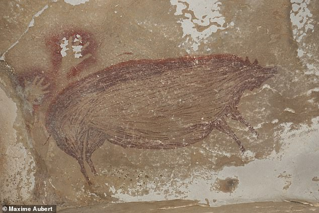 An image of a warty pig (pictured) painted onto the wall of an Indonesian cave some 45,500 years ago may be the 'world's oldest-known figurative artwork', a study has claimed