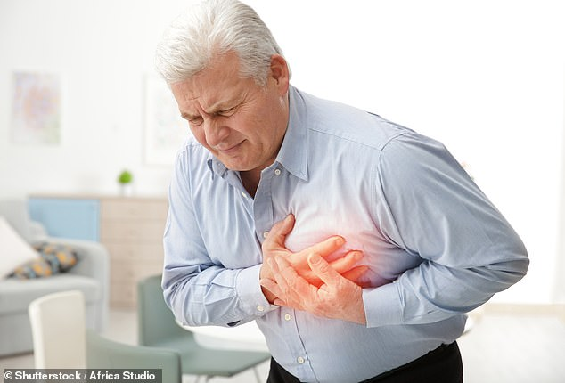 Heart attacks could be predicted years in advance - via a simple X-ray, according to new research (stock image)