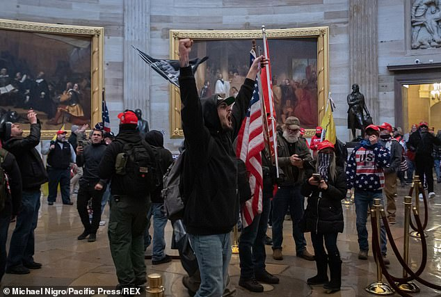 The FBI has warned that armed protests by violent Trump supporters were being planned in all 50 state capitals as well as in Washington for the days leading up to the inauguration of President-elect Joe Biden. Pro-Trump supporters are pictured in the Capitol last week