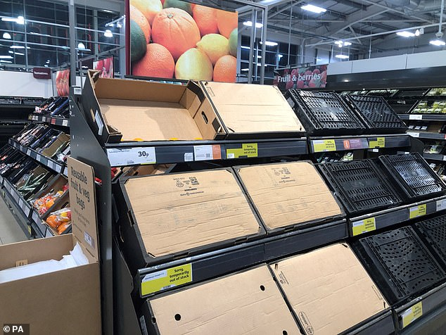The Prime Minister said 'teething problems' were to blame for a lack of fresh fruit and vegetables in Ulster in the past weeks - branding the situation as 'absurd'.