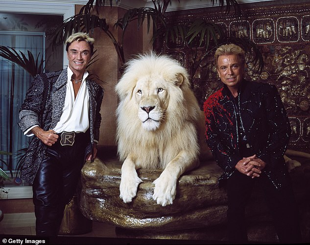 Las Vegas superstar illusionists Siegfried (right) and Roy (left) ) at their Mirage Hotel apartment, prior to Horn's nearly fatal encounter with a white tiger on stage during one of their performances