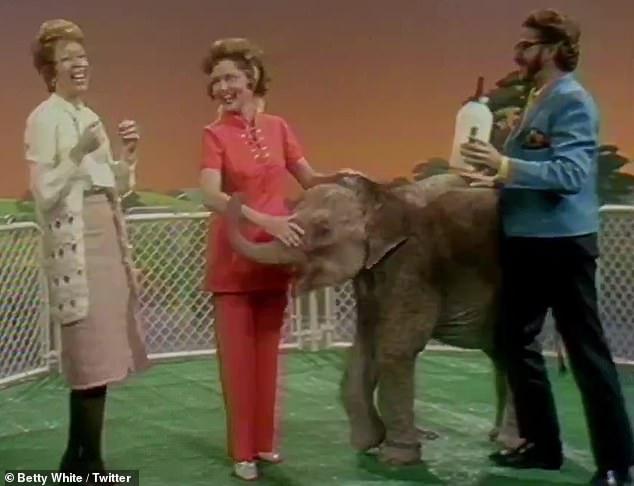 Feeding time: White fed a baby elephant with fellow comedienne Carol Burnett, 87, in one segment