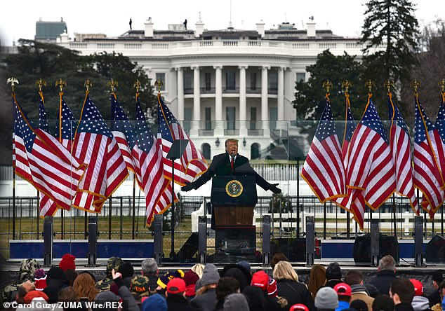 Pictured:Supporters of President Donald Trump attend 'Save America' rally where Trump spoke as election results are to be certified in Washington DC on January 6, 2021