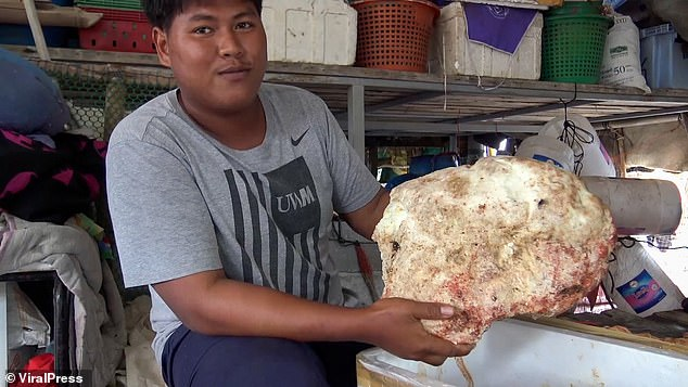 Enough to make you sick with envy! Thai fisherman, 20, finds lump of whale vomit worth £210,000